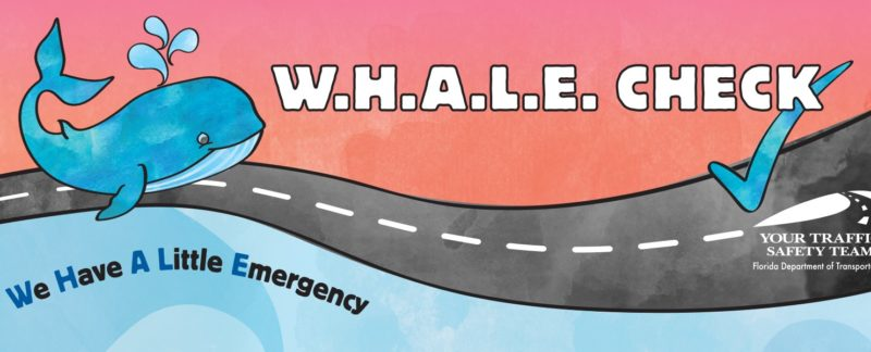 WHALE Check Web Banner